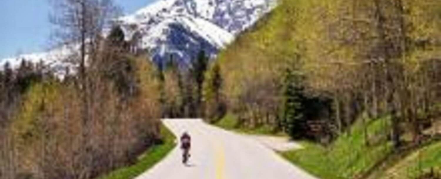 Aspen Road in Springtime - Featured Image