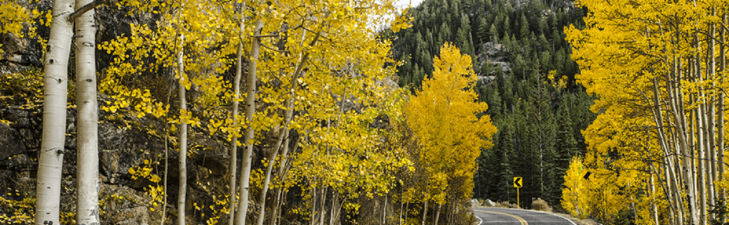 Independence Pass in the Fall