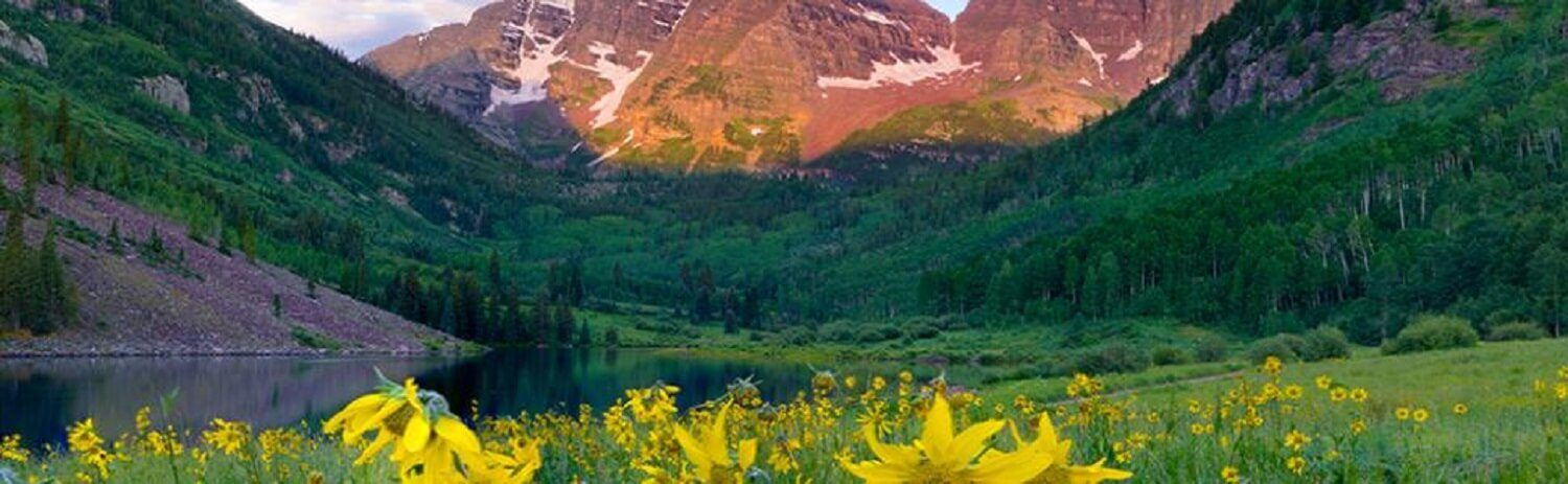 Maroon Bells Flowering