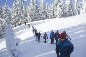 Snowshoe Walking Tours