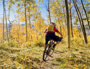Mountain Biking in the Aspens